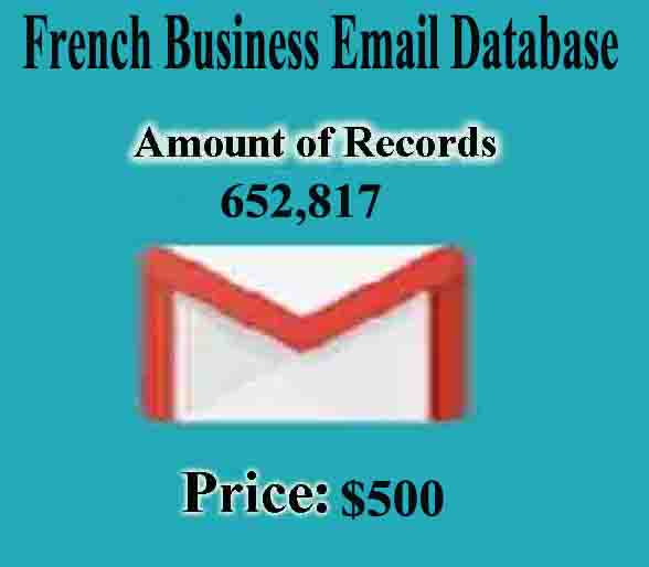 French Business Email Database